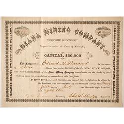 Diana Mining Company Stock   (85227)