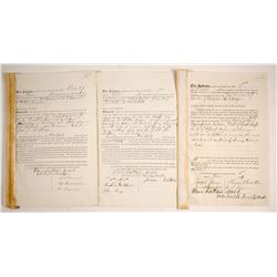 Mining Sale Documents, Manhattan Silver Mining Co.   (77609)