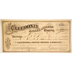 Caledonia Silver Mining Co   (86518)