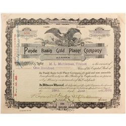 Pande Basin Gold Placer Company   (83604)