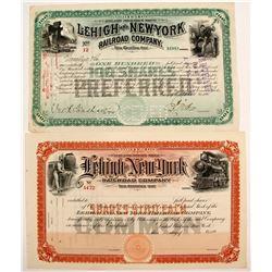 Lehigh and New York Railroad Stocks (2)   (84968)