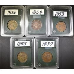LOT OF 5 CIRCULATED LARGE CENTS: