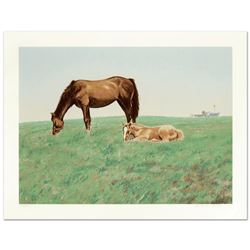 Mare and Foal by Nelson, William