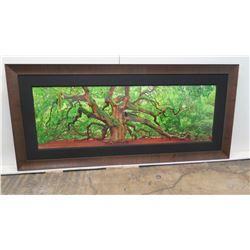 """'Tree of Hope' by Peter Lik, Ltd Ed. (314 of 950), COA, 2 Meters, 76"""" x 37"""" Framed"""