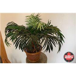 Décor Potted Plant