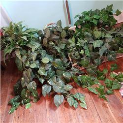 Variety Silk Plants