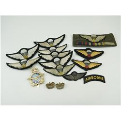 ASSORTED CANADIAN AIRFORCE CAP BADGE AND PARA WINGS, AND PINS