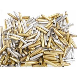 223 REM BRASS CASES