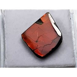 17)  RED FIRE AMMOLITE GEMSTONE