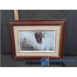 Framed Bald Eagle Picture by Robert Bateman