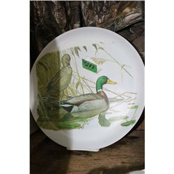 Large Duck Plate