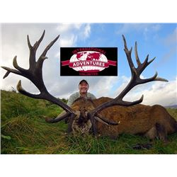 International Adventures Unlimited - Red Stag