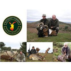 Hunt In Spain