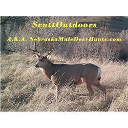 Scott Outdoors