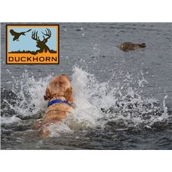 DuckHorn Adventures - Duck Hunt