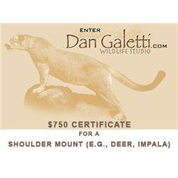 Dan Galetti Wildlife Studio