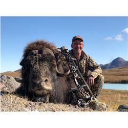Greenland Musk Ox and Reindeer Summer/Fall Hunt