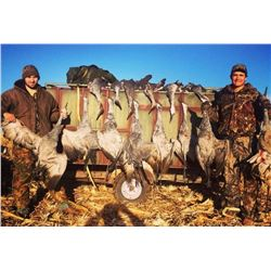 Sandhill Crane Hunt in Texas for 2 Hunters