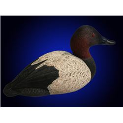 Hand Carved Canvasback Donated by Tom Fisher.