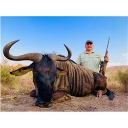 WARTHOG, IMPALA, AND BLUE WILDEBEEST HUNT IN SOUTH AFRICA FOR TWO HUNTERS
