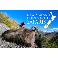 New Zealand 8-Day Red Stag, Bull Tahr, Alpine Chamois Hunt for Three Hunters