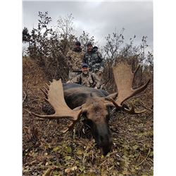Archery (Crossbow - with proper permit for disability) Moose hunt for 2 hunters in Alberta