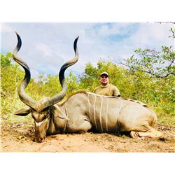 Kudu, Warthog, And Impala Hunt in South Africa For Two Hunters