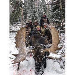 Utah Shiras Moose hunt with GUARANTEED tag for 1 hunter