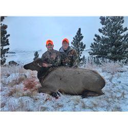Cow Elk hunt for 2 in Wyoming
