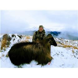 Helicopter Hunt for Tahr and Chamois in New Zealand for 2 Hunters