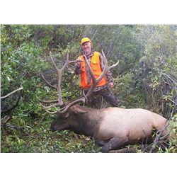 Elk/Mule Deer Drop Camp Pack in hunt for 2 in Colorado