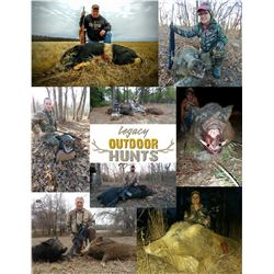 4-day hog and/or Predator hunt (Coyote/Bobcat) for 1