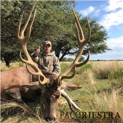 5-days/4-nights Red Stag OR Water Buffalo hunt in Argentina for 1 hunter