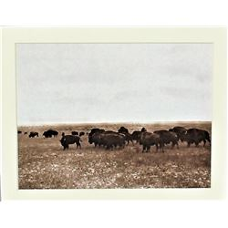 Huffman Photograph