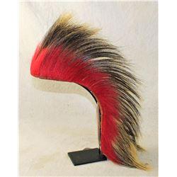 Plains Hair Roach