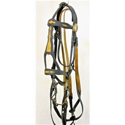 Officer's Dragoon Bridle