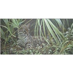 "Framed limited edition print titled "" Reclining Ocelot"" pencil signed by artist Robert Bateman, 131/"