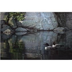 "Framed limited edition print titled "" Northern Reflections-Loon family"" pencil signed by artist Robe"