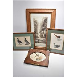Selection of framed prints including a pair of duck motif framed colour plates, an oak framed print