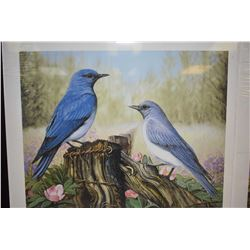 "Two unframed limited edition prints, both titled ""Mountain Bluebirds"" pencil signed by artist John S"