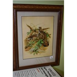 Two framed pictures, one featuring butterflies and one of pheasants