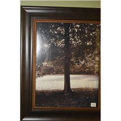 Two framed sepia prints of trees