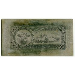 Banco Italiano Del Uruguay, 1887 Unique Steel Back Printing Plate from the ABN Archives.