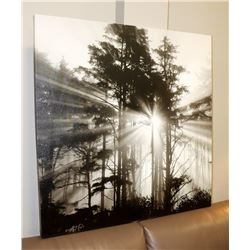 BLACK AND WHITE TREE CANVAS PICTURE