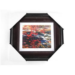 """A.Y. Jackson 'The Red Maple' Studio Litho Panel. 14x15"""" Framed"""