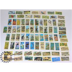 VINTAGE LOT OF BROOK BOND TEA COLLECTOR CARDS