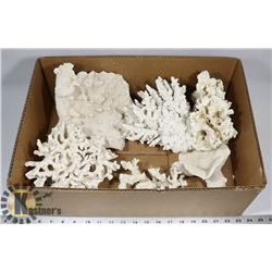 BIN OF REAL BLEACHED CORAL.