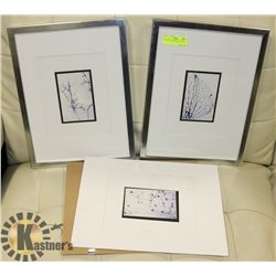 SET OF SILVER FRAMED PICTURES.