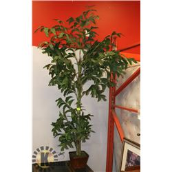7' SILK PLANT