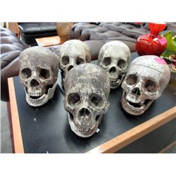 5 Movie Prop Skulls